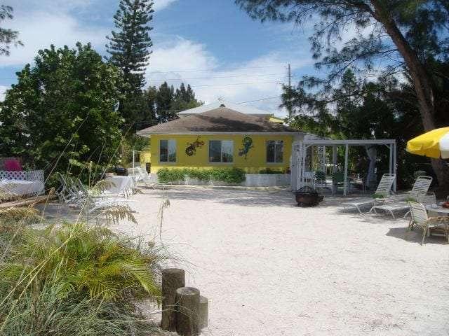 beach-side-palms