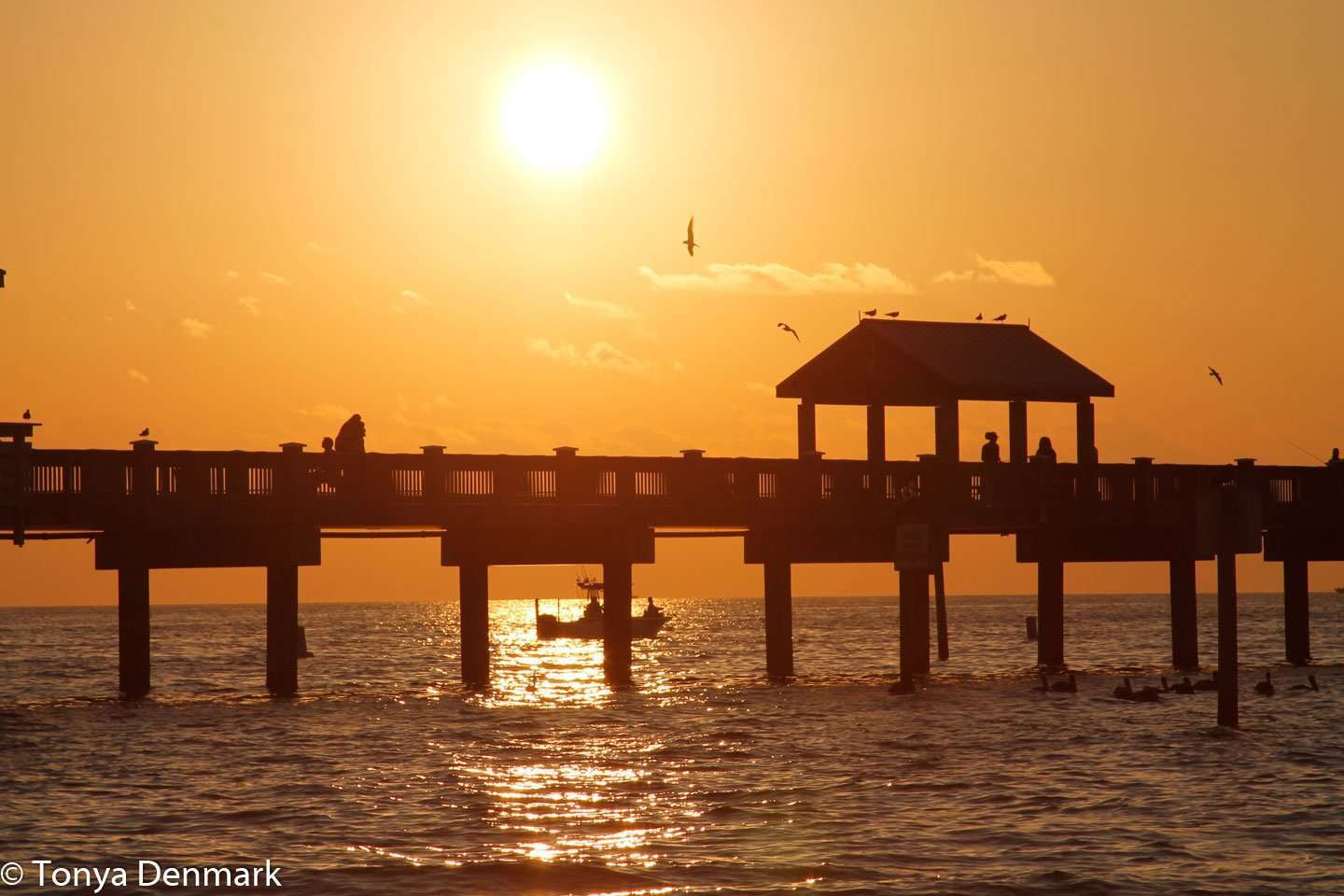 Where to Watch the Sunset in Clearwater