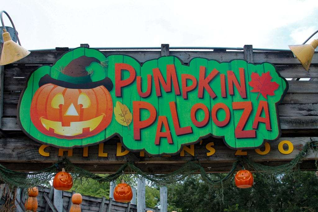 Halloween at Lowry Park Zoo