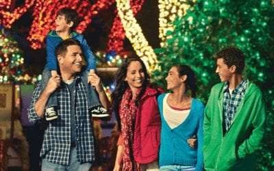 How to do the Holidays in Tampa Florida