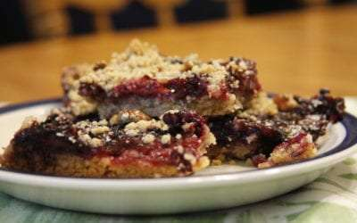 Fresh From Florida Berry Snack Bars – Perfect Road Trip Sweet Treat