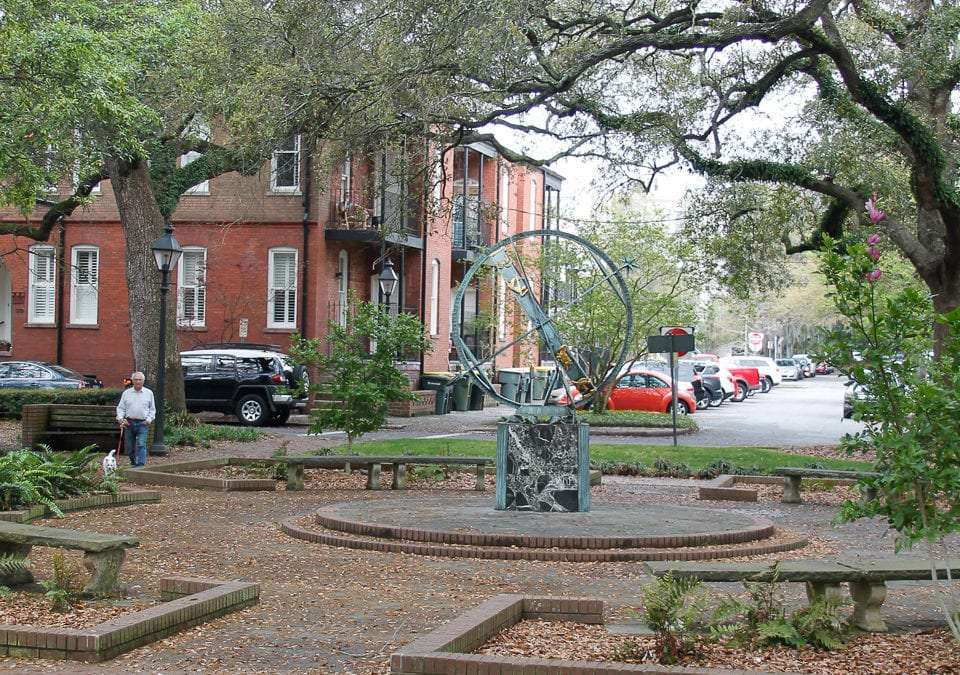 Hidden Savannah: 7 Unique & Unusual Things to Do