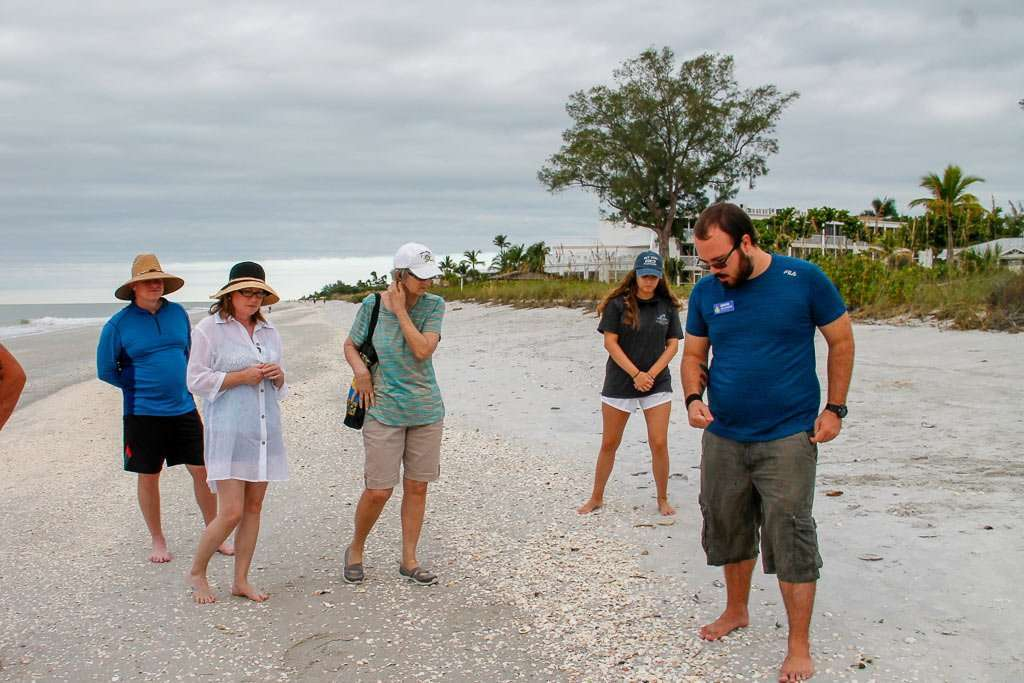 Guided Naturist Shell Walk at Beachfront Hotel Sanibel Island