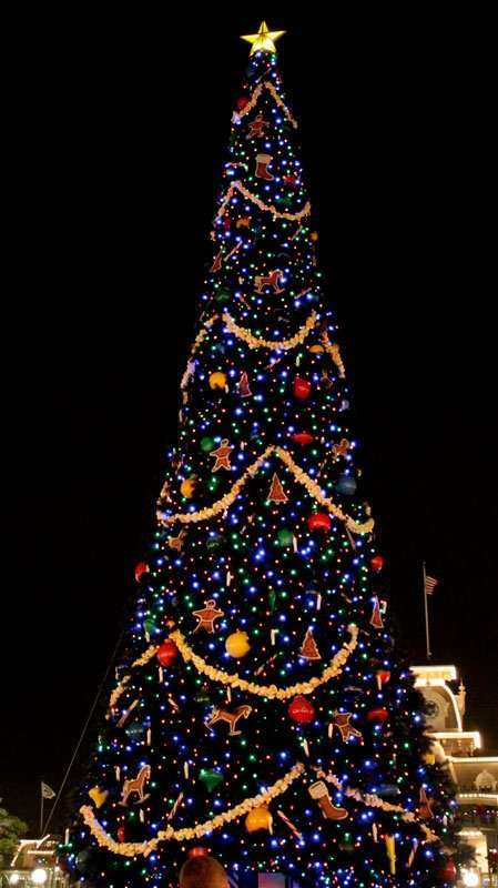 Fun Ways to have Christmas Celebrations in Florida including seeing all the Christmas Trees at Walt Disney World