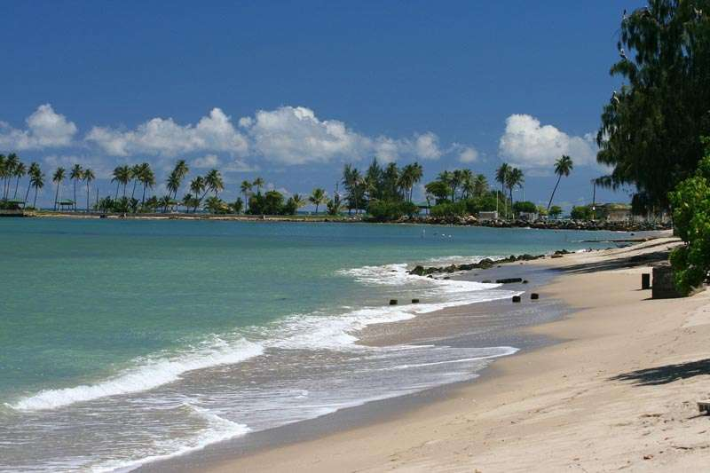 white sand beach with palm trees in Puerto Rico, one of the best places to travel with kids