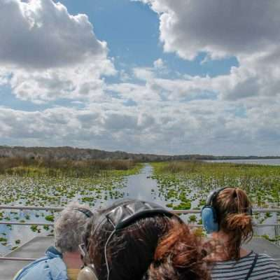 Wild Florida Airboats & Wildlife Park – The Best Airboat Rides in Orlando