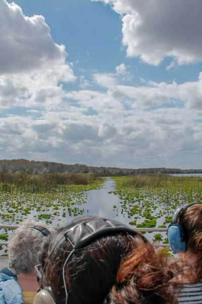 Wild Florida Airboats & Wildlife Park view of wetlands through the airboat