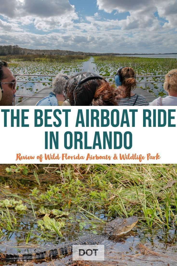 Wild Florida Airboats Wildlife Park The Best Airboat