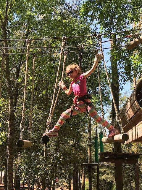 Family Friendly things to do in Orlando include the Tree Trek Orlando