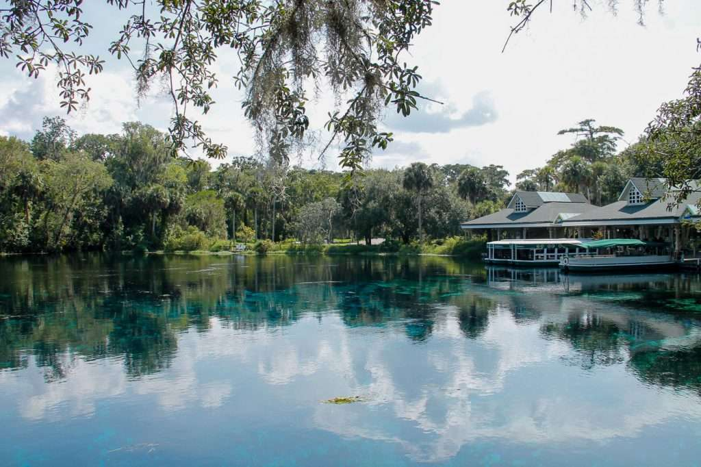 silver river and Silver Springs are one of the top things to do in Ocala
