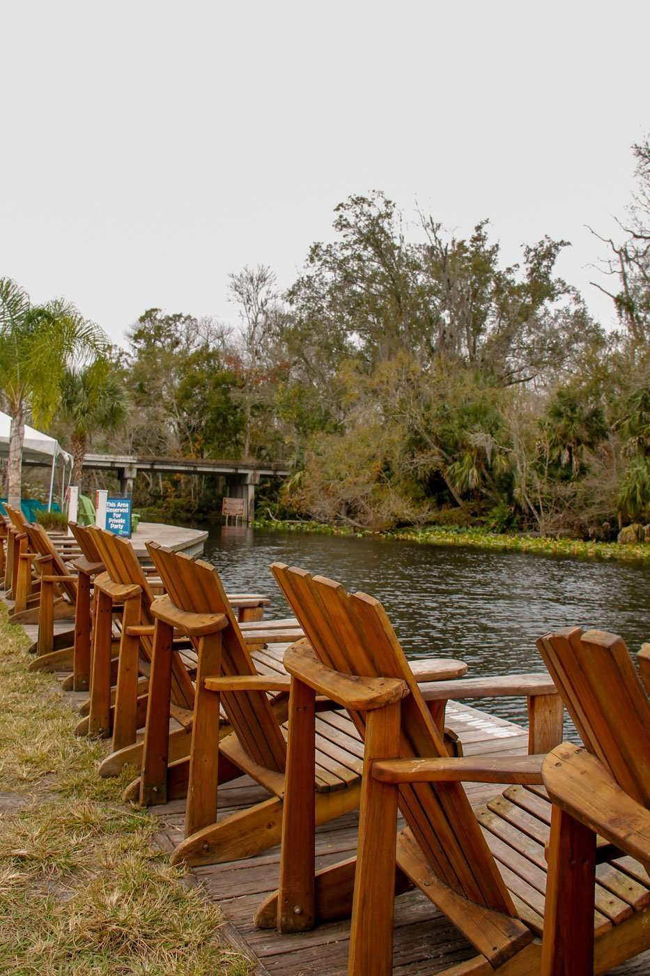 chairs lined up along the Wekiva River at Wekiva Island