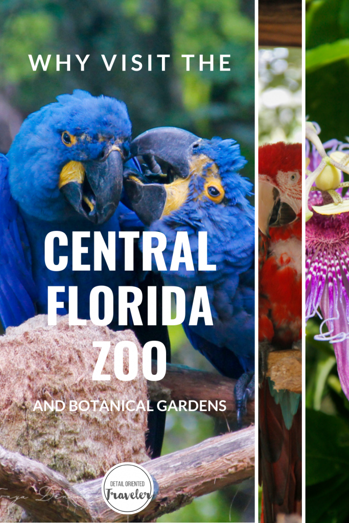 Pin image of the Central Florida Zoo
