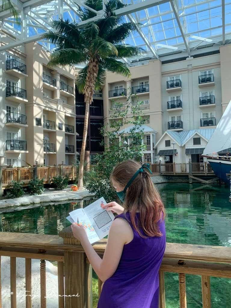 girl with book looking for hidden pumpkin near palm tree