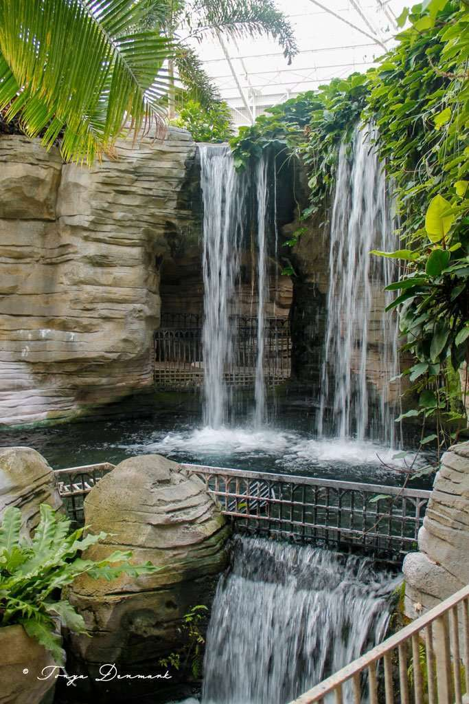 waterfall inside of Gaylord Palms Resort Orlando