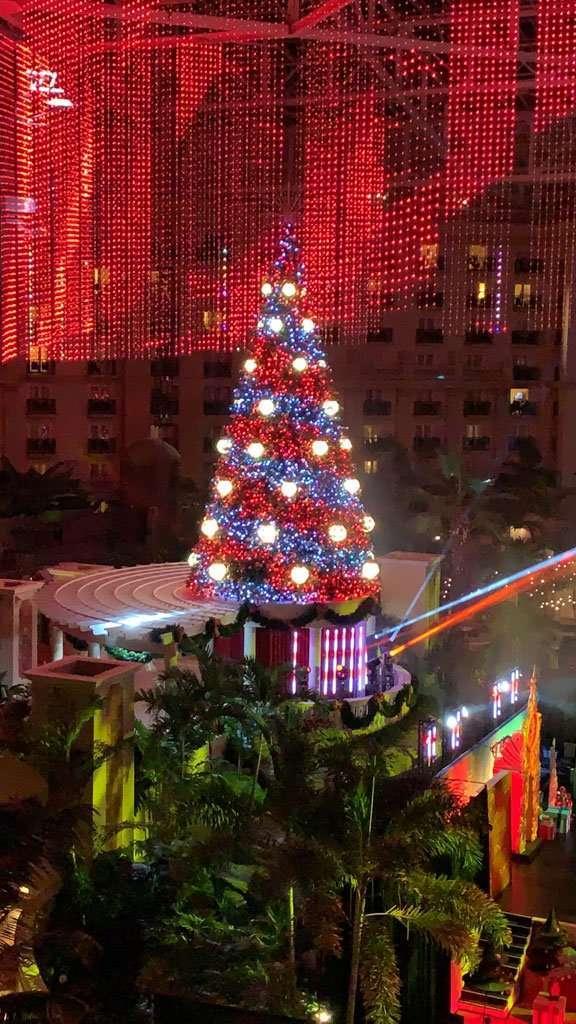 Christmas at Gaylord Palms Christmas tree light show