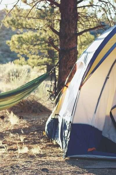 Campsite at golden hour